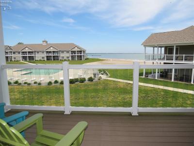 Port Clinton Condo/Townhouse For Sale: 3075 N Beach Towne