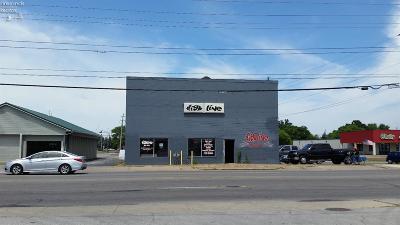 Sandusky Commercial For Sale: 301 W Perkins Avenue