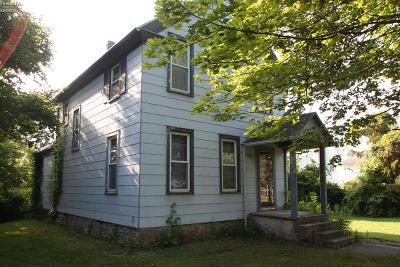 Kelleys Island Single Family Home For Sale: 314 Division Street