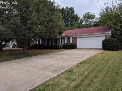 Port Clinton Single Family Home For Sale: 316 E 11th Street