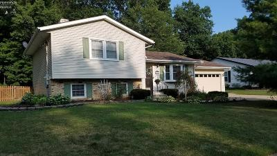 Vermilion Single Family Home For Sale: 1411 Rolling Meadows Drive