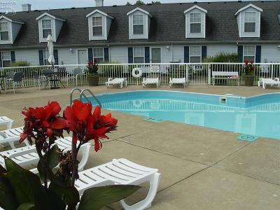 Port Clinton Condo/Townhouse For Sale: 31 N Schooner Point Drive