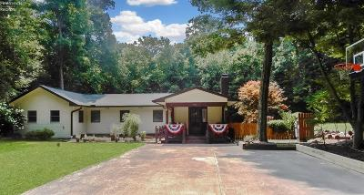 Put-In-Bay Single Family Home For Sale: 830 Evelyn Road