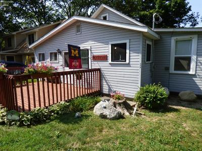 Put-In-Bay Single Family Home For Sale: 379 West Shore Boulevard