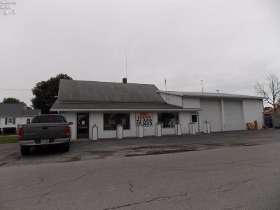 Port Clinton Commercial For Sale: 1107 W Fremont Rd