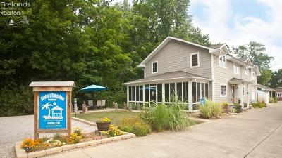 Put-In-Bay Single Family Home For Sale: 375 Doller