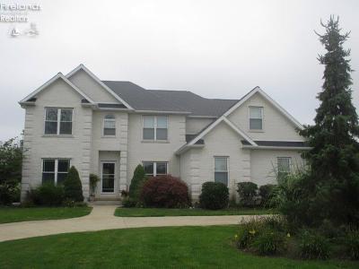 Sandusky Single Family Home For Sale: 810 Birchwood Drive
