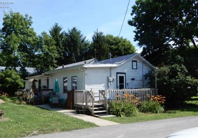 Put-In-Bay Single Family Home For Sale: 389 Meechen