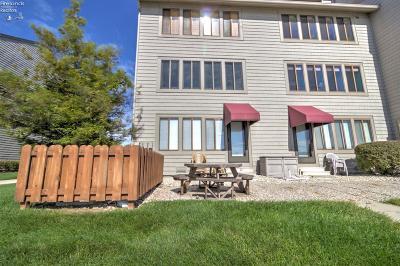 Port Clinton Condo/Townhouse For Sale: 509 W Lakeshore Drive #A-3
