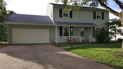 Sandusky Single Family Home For Sale: 3515 Matthes Avenue
