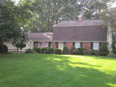 Sandusky Single Family Home For Sale: 6703 Hayes Avenue
