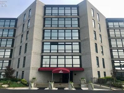 Port Clinton Condo/Townhouse For Sale: 711 W Lakeshore Drive #304