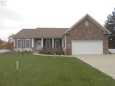 Port Clinton Single Family Home For Sale: 4388 E Island Pines Drive