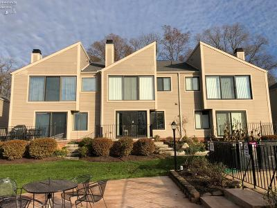 Marblehead Condo/Townhouse For Sale: 480 Parkside Drive