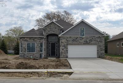 Sandusky Single Family Home For Sale: 3008 Angels Pointe Drive