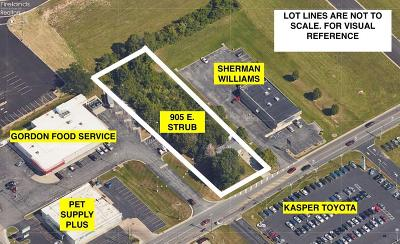 Sandusky Commercial For Sale: 905 E Strub Road