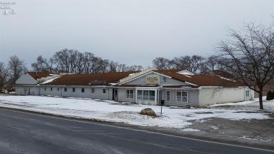 Sandusky Commercial For Sale: 3110 Bardshar Road