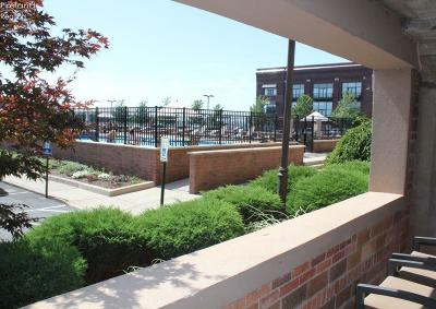Sandusky Condo/Townhouse For Sale: 401 W Shoreline Drive #112