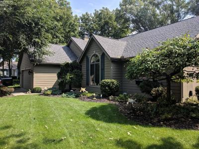 Single Family Home For Sale: 171 N Crest Drive