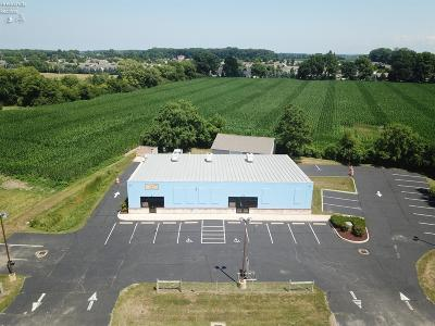 Sandusky Commercial For Sale: 6512 Milan Road