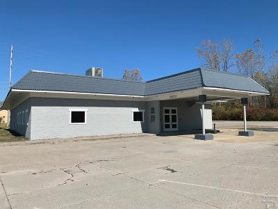 Sandusky Commercial For Sale: 6402 Milan Road