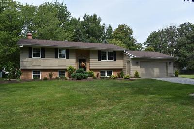 Huron Single Family Home For Sale: 1121 Mudbrook Road