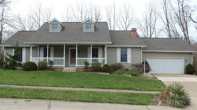 Huron Single Family Home For Sale: 1131 Sommerset Drive