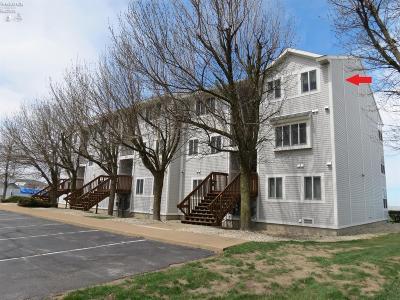 Port Clinton Condo/Townhouse For Sale: 202 W Lakeshore Drive #F