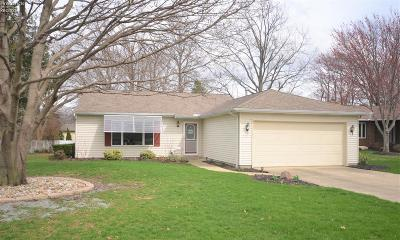 Vermilion Single Family Home For Sale: 4287 Ford Lane