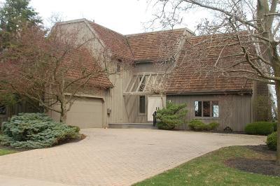 Huron Single Family Home For Sale: 917 Beachside Lane