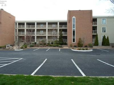 Huron OH Condo/Townhouse For Sale: $189,900