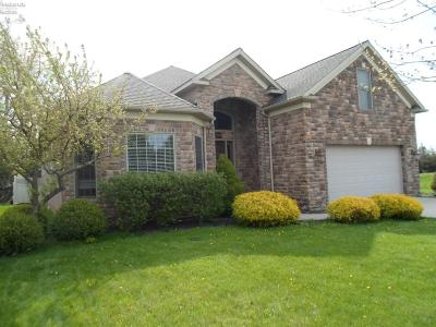Sandusky Single Family Home For Sale: 3002 Angels Pointe