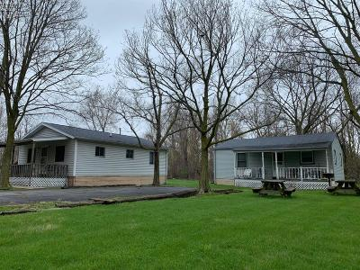 Put-In-Bay Single Family Home For Sale: 119 Massie