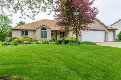 Sandusky Single Family Home For Sale: 5714 Schenk Road