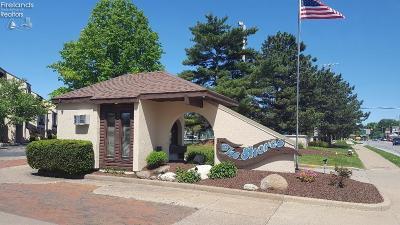 Port Clinton Condo/Townhouse For Sale: 1803 E Perry Street #59