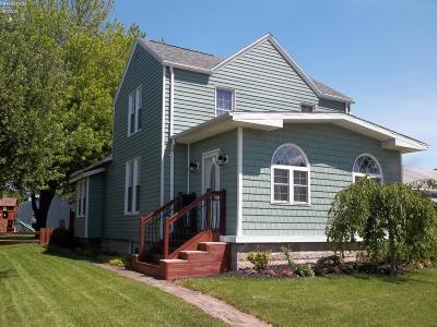 Port Clinton Single Family Home For Sale: 423 Fulton Street