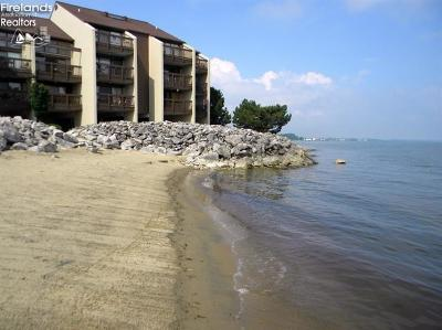 Port Clinton Condo/Townhouse For Sale: 1801 N Perry Street #8