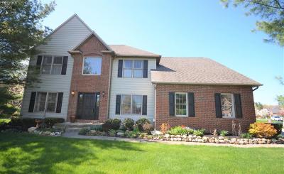 Vermilion Single Family Home For Sale: 1058 Arrowhead Drive