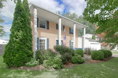 Huron Single Family Home For Sale: 313 Portland Drive