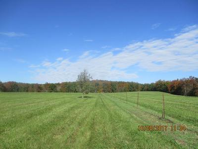 Lucasville Residential Lots & Land For Sale: 2075 McCorkle Rockwell Road