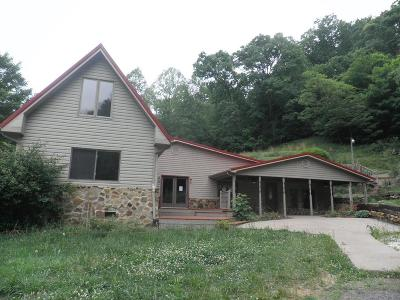 Single Family Home For Sale: 164 Twin Valley