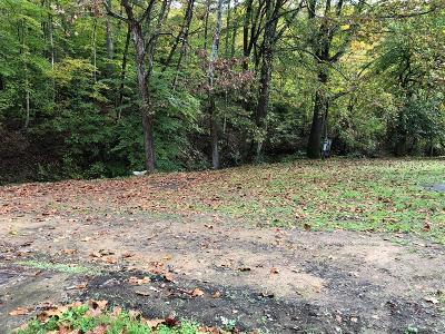 West Portsmouth Residential Lots & Land For Sale: 788 Carys Run Pond Creek