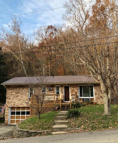 Portsmouth Single Family Home For Sale: 1319 Lowery Hollow Rd.