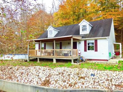 Franklin Furnace Single Family Home For Sale: 3574 Big Pete Road