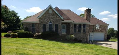 Wheelersburg Single Family Home For Sale: 3940 Tick Ridge Road