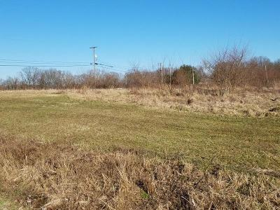 Minford Residential Lots & Land For Sale: 3212 White Gravel McDaniel Road