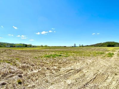 Wheelersburg Residential Lots & Land For Sale: Goose Creek - Parcel F