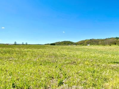 Wheelersburg Residential Lots & Land For Sale: Goose Creek - Parcel H