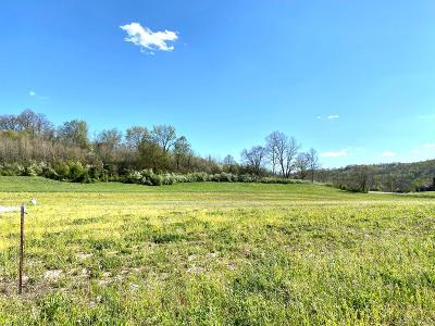Wheelersburg Residential Lots & Land For Sale: Goose Creek - Parcel M