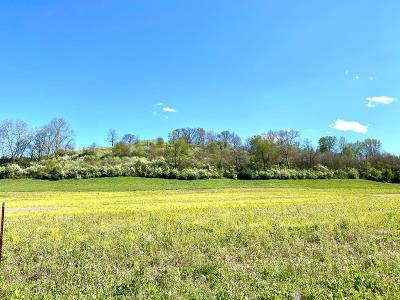Wheelersburg Residential Lots & Land For Sale: Goose Creek - Parcel P